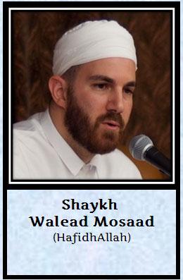 shaik Walead Musaad